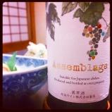 Kyoto - japansk vin
